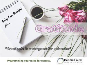 Online Meditation: Gratitude @ Online